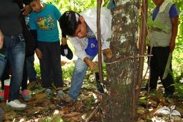 Practica-del-Campo-Amazonia-10