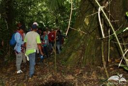 Practica-del-Campo-Amazonia-20