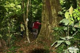 Practica-del-Campo-Amazonia-22