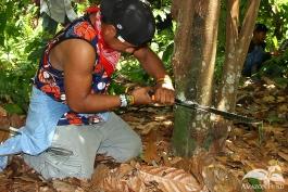 Practica-del-Campo-Amazonia-28