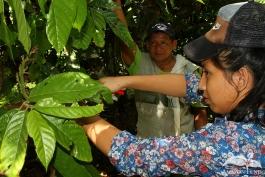 Practica-del-Campo-Amazonia-29